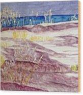 Gulf Shores Alabama Wood Print