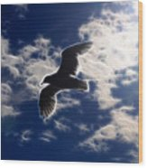 Gull Against Sky Fractal Wood Print
