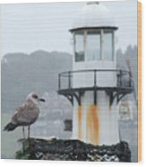 Gull And Lighthouse Wood Print