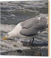 Gull At Surfs Edge Wood Print