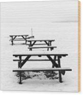 Gull Lake Winter Study 3 Wood Print
