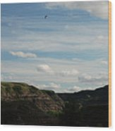 Gull Over The Badlands Wood Print
