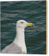 Gull Profile Wood Print