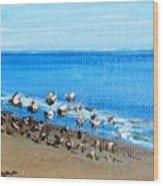 Gulls At Play Wood Print