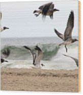 Gulls Away Wood Print