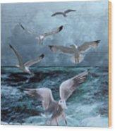 Gulls' Banquet Wood Print