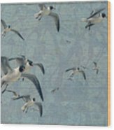 Gulls Wood Print by James W Johnson