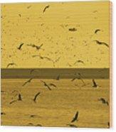 Gulls Orange Tint Wood Print