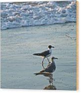 Gulls Strolling Tybee Island Beach Wood Print