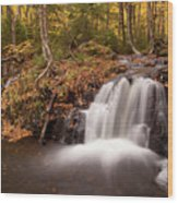Gully Lake Cascades #1 Wood Print