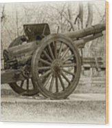 Gun At Fort Howard Wood Print