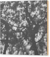 Gunmetal Grey Shadows -  Wood Print