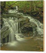 Gushing At Cave Falls Wood Print