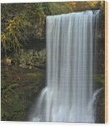 Gushing At Silver Falls Wood Print