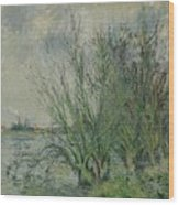 Gustave Loiseau 1865 - 1935 Willows, Edges Oise Or On The Banks Of The Oise Wood Print