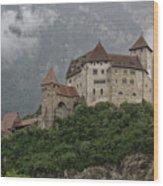 Gutenberg Castle Wood Print by Yair Karelic