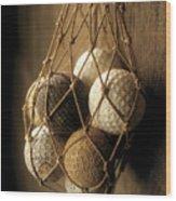 Gutty Bramble And Mesh II Wood Print