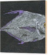 Gyotaku African Pompano Wood Print by Captain Warren Sellers
