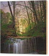 Gypsy Glen  Rd Waterfall  Wood Print