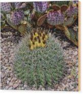 H D R Budding Cactus Wood Print