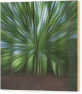 Haagse Bos. Oil Painting Effect. Wood Print
