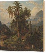Hacienda De San Esteban De Puerto Cabello, Venezuela Wood Print