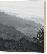Hacienda Lamberti Wood Print by Sarah Lynch
