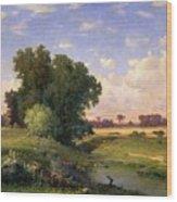 Hackensack Meadows - Sunset Wood Print