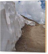 Hagerman Pass Colorado Wood Print