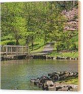 Hagerstown City Park Wood Print