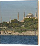 Hagia Sophia And Blue Mosque Wood Print