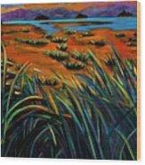 Haida Gwaii Sunrise Wood Print by Faye Dietrich