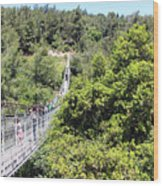 Haifa Hanging Bridge Wood Print