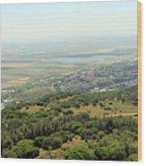 Haifa Natural Park Wood Print