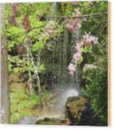 Haily Falls Wood Print by Marty Koch