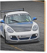 Hairy Dog Garrrage - Porsche - Pit Lane Wood Print