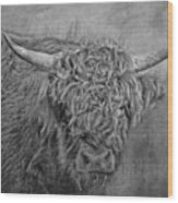 Hairy Highlander Bw Wood Print