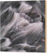 Hairy River II Wood Print