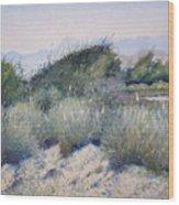 Hajar Mountains Oman 2002 Wood Print