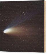Hale-bopp Comet Wood Print by Ira Meyer