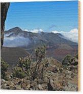 Haleakala Overlook Wood Print
