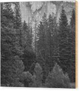 Half Dome In Monochrome Wood Print