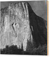 El Capitan - Yosemite, Ca Wood Print