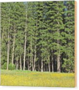 Half Dome Meadow Wood Print