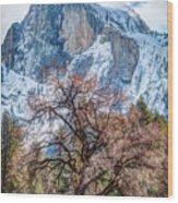 Half Dome Meadow Tree Winter Wood Print