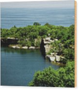 Halibut Point, 5453 Wood Print