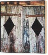 Hall Doors Wood Print