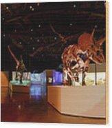 Hall Of Paleontology Wood Print
