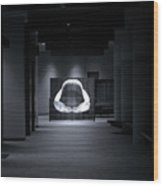 Hall Of The Megalodon Wood Print