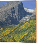 310221-v-hallet Peak In Autumn V  Wood Print